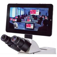 5MP Microscope Pad Camera, Bundle Professional Measuring Software with Win 7(10.1 inch) Manufactures
