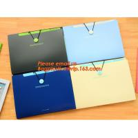 OEM Office stationery filing supplies plastic document pp envelope carrying file