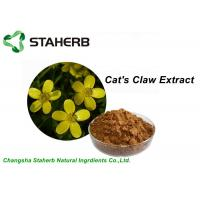Quality Yellow Brown Powder Herbal Extract Ratios , Cat's Claw Extract P.E 5/1 10/1 20/1 for sale