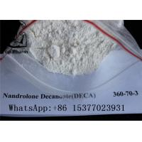 White Powder Deca Nandrolone Decanoate CAS 360-70-3 For Fitness Muscle Gaining Manufactures