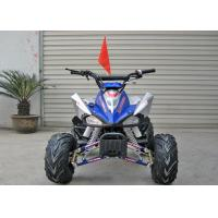 Front Drum Brake 110CC ATV Quad Bike Single Cylinder Electric Start Automatic Clutch Manufactures