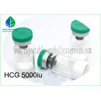 Freeze Powder Human Chorionic Gonadotropin Injectable For Burning Calories Manufactures