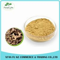 Aloe Gel Freeze-dried Extract powder 100:1 Manufactures