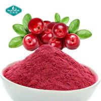 100% Natural Freeze Dried Cranberry Powder Cranberry Juice Powder Extract 25% for Skin Manufactures