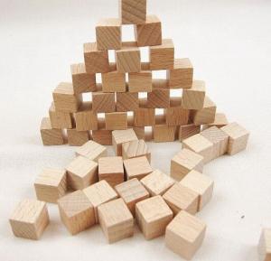 10mm beech wood cubes natural wooden block kids playing blocks Manufactures