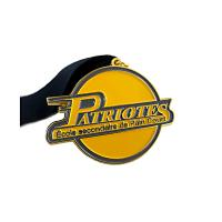 Promotional Metal Award Medals Zinc Alloy Premium Quality Materials SGS Approved Manufactures