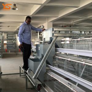 China Walk In Chicken Coop in Large Scale Poultry Farm In Uzbekistan WhatsApp:+8615638238763 on sale