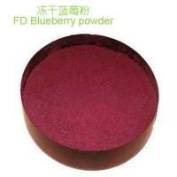 Freeze dried blueberry powder Manufactures