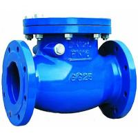check valve Manufactures