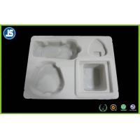 CMYK / Pantone Insert Medical Plastic Tray Packaging With PP For Electronic Manufactures