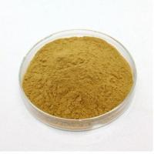 Quality Honeysuchle flowers chlorogenic acid powder Cas no.327-97-9 brown for sale