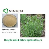 Preservation Ursolic Acid Rosemary Extract Manufactures