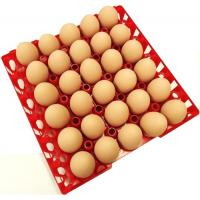 China Egg tray with 30 holes PP plastic material and different color QL401 on sale