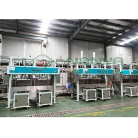China Waste Paper Non Plastic Electronic Packaging Pulp Tray Machine on sale