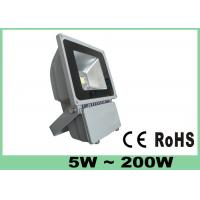 Battery Powered Bridgelux COB LED Flood Light Outdoor 50