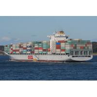 International Shipping Agency Services from Shenzhen&Shanghai to Dubai,UAE Manufactures