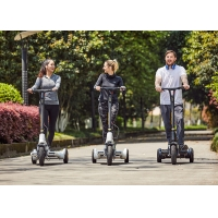 China 30km L1600mm E Fold Mobility Scooter for Unisex on sale