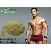 Natural Safety Methyl Trenbolone Steroids / Healthy Anti Estrogen Anabolic Steroid Powders Manufactures