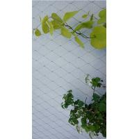 Buy cheap Smooth Surface Stainless Steel 316 Wire Rope Mesh For Plant climbing from wholesalers