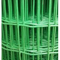 Welded holland wire mesh fence /graden fence/Euro fence Manufactures