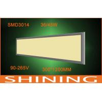 3060Lm 36 W Led Panel Lamp 120 Degree Cold White 300X600 mm Manufactures