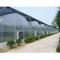 Arched Roof Tomato Plant Greenhouse Span Width 9.6 / 10.8 / 12m Rainfall 140mm/H Manufactures