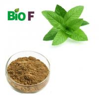 China Powdered Herbal Extracts Sweet Tea Leaf Extract Powder For 70% Rubusoside on sale