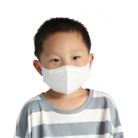 Earloop Kn95 Disposable Small Anti Smog Haze Masks For Kids Manufactures
