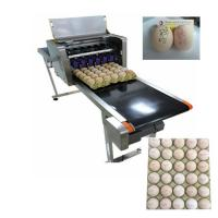 Flexible Egg Marking Equipment With Six 45ml Various Colors Cartridges Manufactures