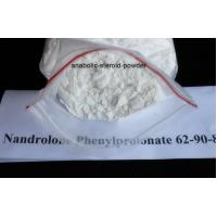 Enhances Muscle Anbolic Steroid Powder Nandrolone Phenylpropioate CAS 62-90-8 Manufactures