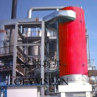 Electric Gas Fired Thermal Oil Boiler 1.6 Mpa With Horizontal And Vertical