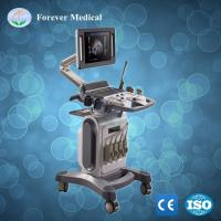 Digital Portable 4D Color Doppler Ultrasound Manufactures