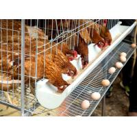 China Egg Layer Chicken Battery Cage , Farm Laying Hens Poultry Layer Cage System on sale