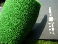 China Leisure Grass WF-M2 wholesale