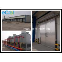 China Intelligent Control Cold Storage Of Fruits And Vegetables For Fruit Juice on sale