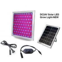 DC24V Solar LED Grow Light 58W Dimming Red+Blue Full spectrum for Vegetable and Flower Manufactures