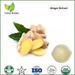 ginger extract,ginger extract gingerol,ginger extract powder,gingerol Manufactures