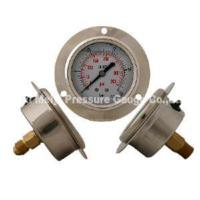 China Liquid Filled Pressure Gauge with Flange (MY-LFF-210) on sale