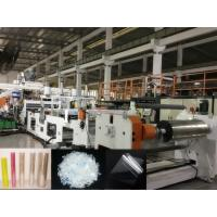Twin Screw PET Sheet Extrusion Machine, Using Bottle Regrind Flakes As Raw Material, Dryer free Manufactures