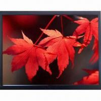 19-inch Industrial LCD Monitor with Wide Viewing Angle and WLED Backlight Manufactures
