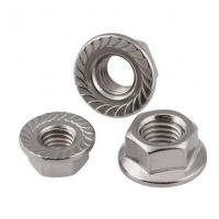 China M12x25 DIN6923 Heavy Hex Nuts Hex Serrated Flange Nut Stainless Steel Bolt Pine on sale