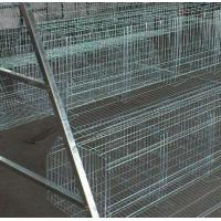 China High quality cheap poultry cage layer chicken cage for sale on sale