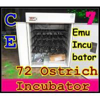 72 Ostrich Egg Incubator CE Marked Automatic Emu Incubator for Hatching Eggs (YZITE-16) Manufactures