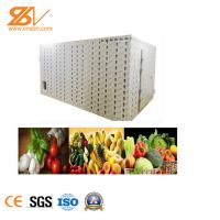 Strong Industrial Hot Air Dryer Fruit Drying Equipment Easy Installation Manufactures