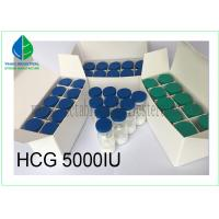 China Injectable Gonadotropin Human Growth Hormone Peptide HCG 5000iu/ Vial on sale