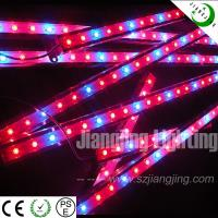 2012 new style DC12V Red 660nm led grow light for plant growth Manufactures
