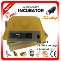Quality Newest EW-48A automatic high quality chicken incubator / mini quail egg incubator high hatching rate for sale