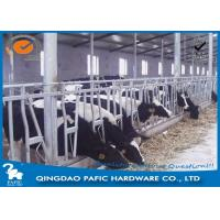 Livestock Farm Locking Feed Barriers / Steel Galvanized Cattle Headlock Plan Manufactures