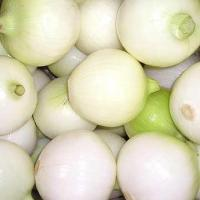 Peeled Onion Manufactures