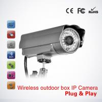 Economical P2p H. 264 Waterproof Ir Ip Camera 20m (PT-PW236H) Manufactures
